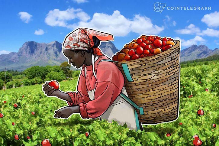 Cách sử dụng Blockchain trong nông nghiệp