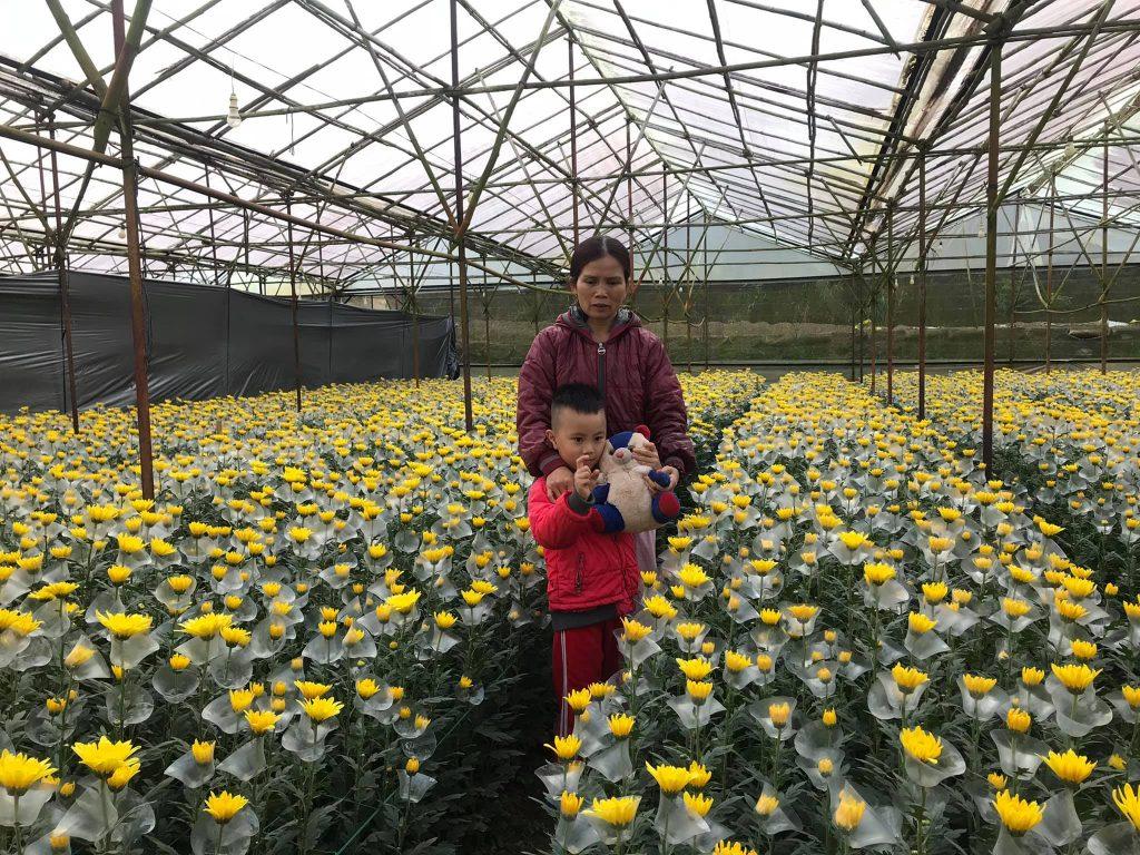 Giải pháp nông nghiệp thông minh Nextfarm - quan trắc và điều khiển vi khí hậu