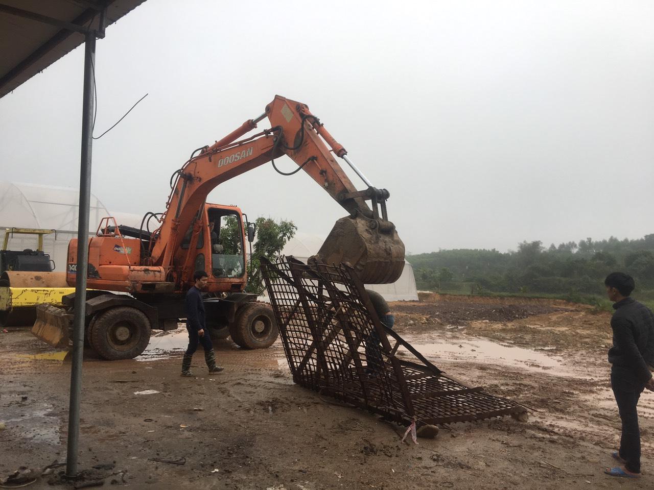 Nextfarm triển khai dự án châm phân tự động cho Công ty Rau Sạch Quảng Tân tại Đầm Hà, Quảng Ninh