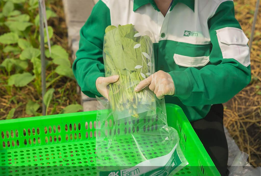 Thế Giới Di Động đầu tư vào nông nghiệp 1