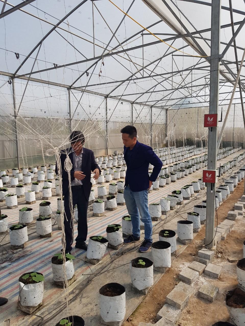 Giải pháp Nông nghiệp thông minh 4.0 Nextfarm