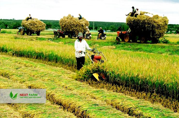 Giải pháp quản lý nông trại Next Farm trong thế kỷ mới (Phần 1)