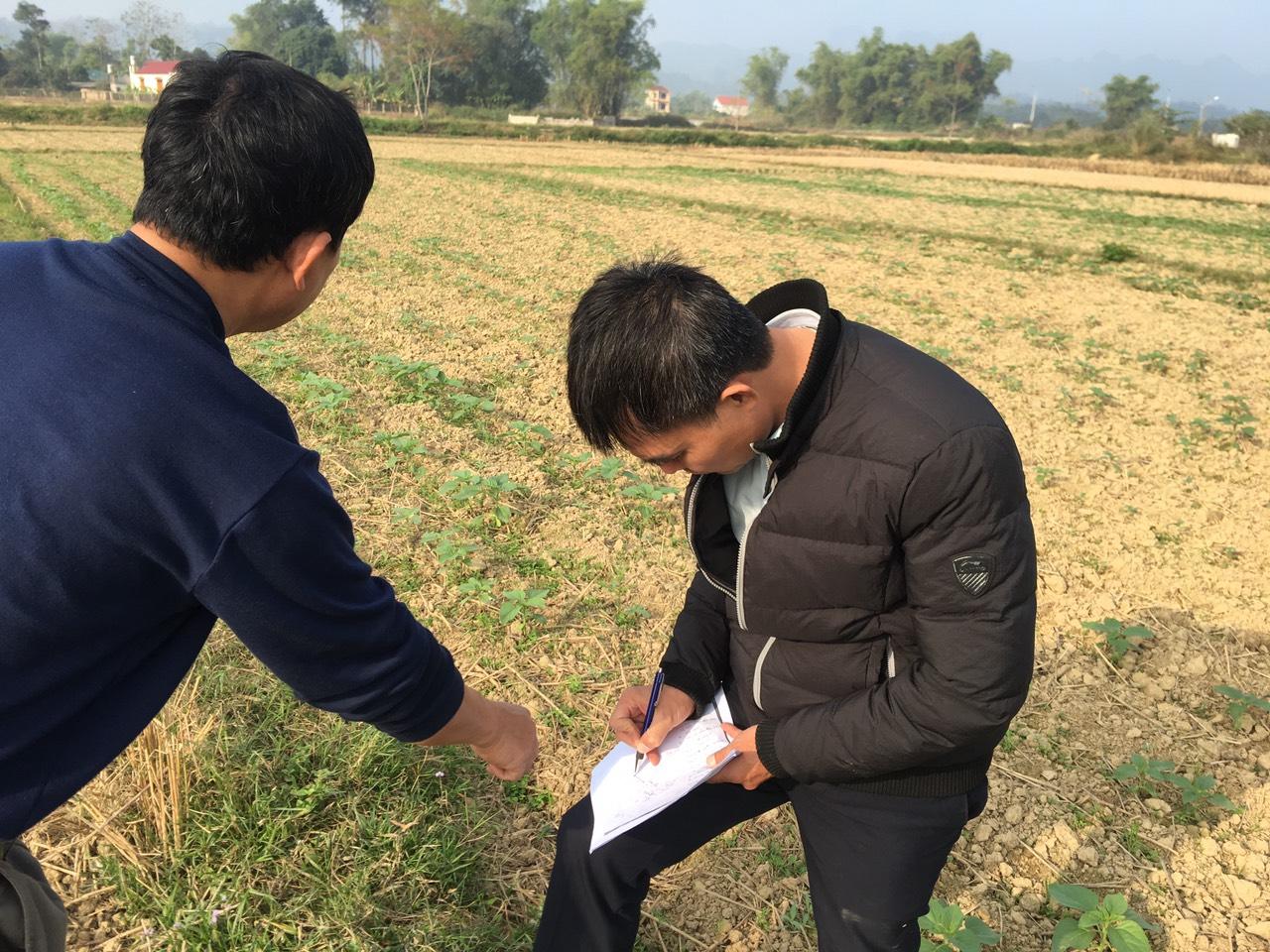 Giải pháp Nông nghiệp thông minh Nextfarm