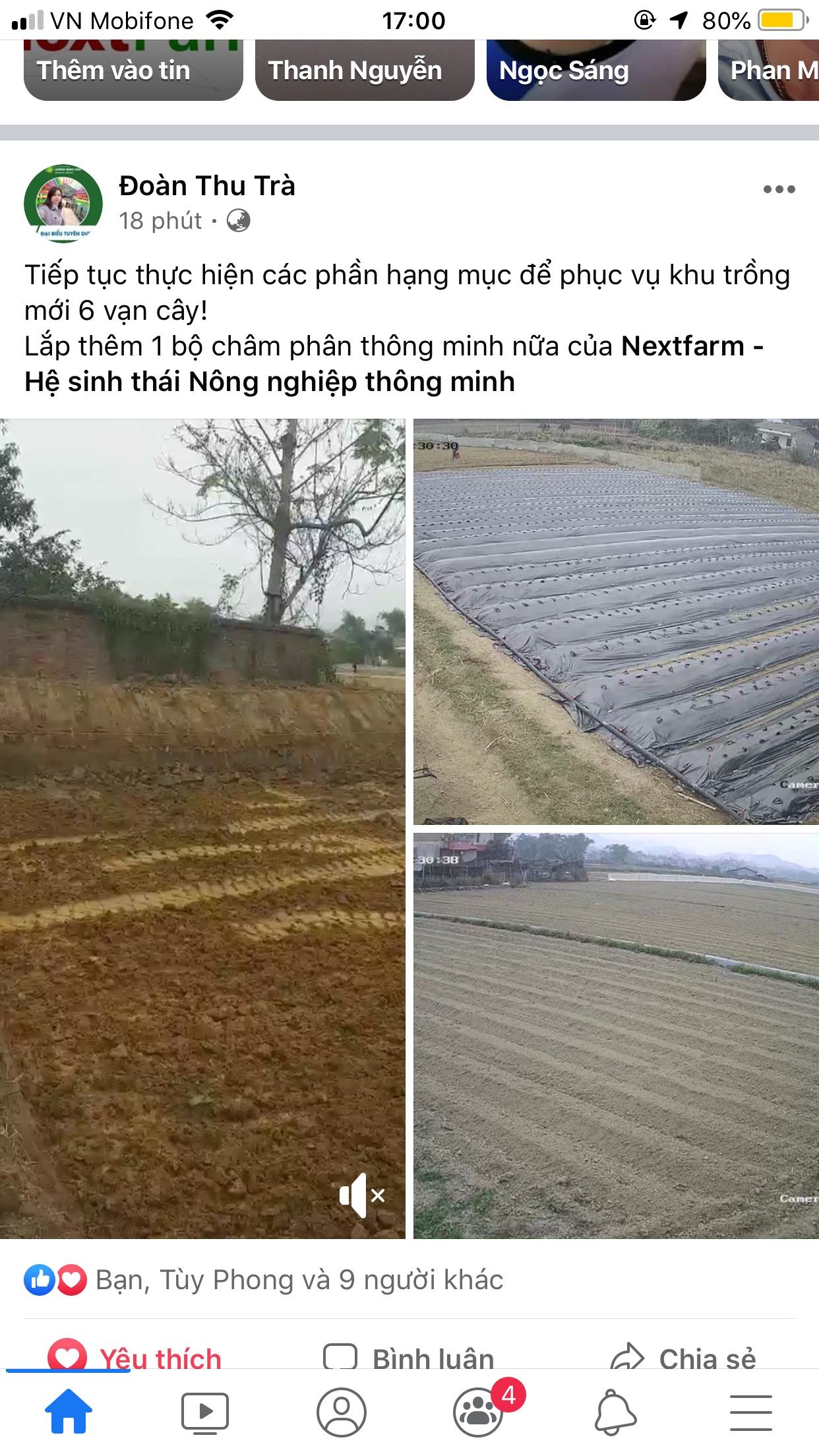 Chia sẻ của chủ Farm Đoàn Thu Trà trên facebook