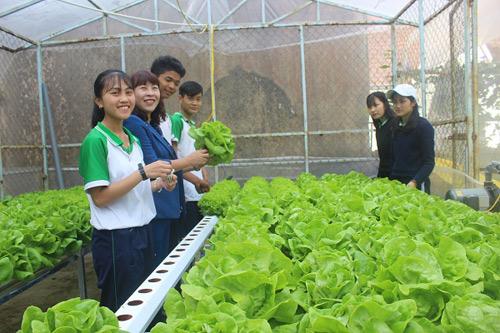 Mô hình trải nghiệm nông nghiệp thông minh