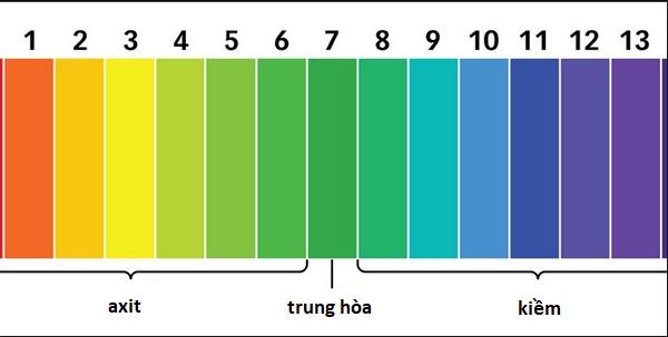 PH, máy đo PH nước và những vấn đề cần lưu tâm đối với cây trồng