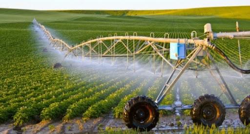 Nông nghiệp công nghệ cao – xu hướng mới của nên nông nghiệp Việt Nam