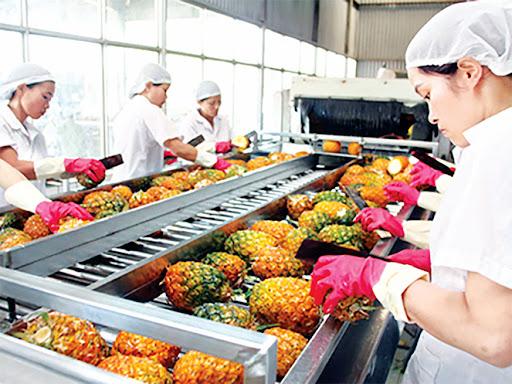 Hệ thống Scada cho nhà máy chế biến nông sản
